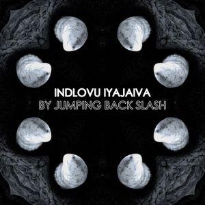 JUMPING BACK SLASH - Indlovu Iyajaiva (Mix For Steak House Records)