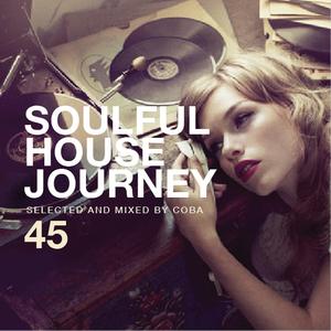 Soulful House Journey 45