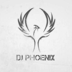Phoenix Mix #9 House