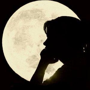 Le voci della notte