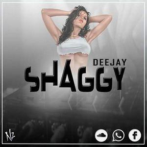 Mix DJ Shaggy EDM
