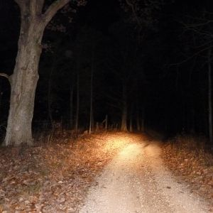 Night Drive C90