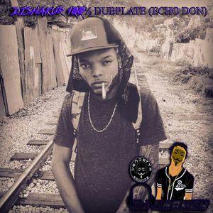 DJ Shakur - Exclusive 100% Dubplate (Echo Dan) (Reggae & Dancehall Mixtape 2017)