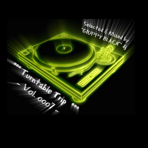 °°° Turntable Trip - Vol. ooo7 ( GIUPPY BLACK dj ) °°°