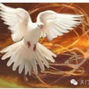 13.基督成形在我們心裡
