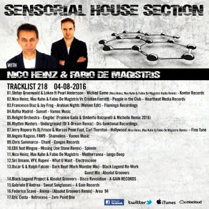 Sensorial House Section # 218 04-08-2016 Guest Absolut Groovers