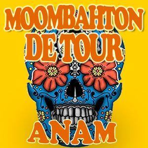 Moombahton Detour by Anam