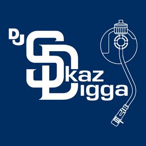 DJ Skaz Digga R&B Hop (Hip Hop Flips)1 Live From KingDomeCome