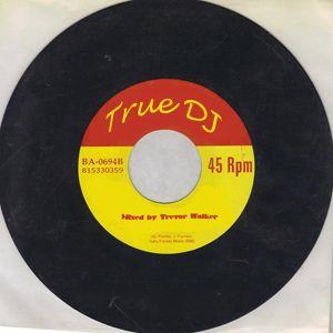 True DJ - Teaser - Mixed by Trevor Walker - FREE DOWNLOAD