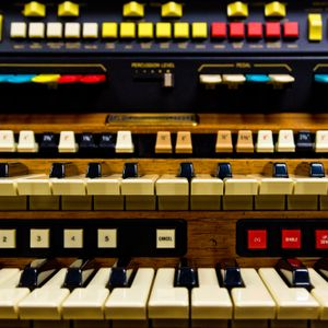 Organ Donars