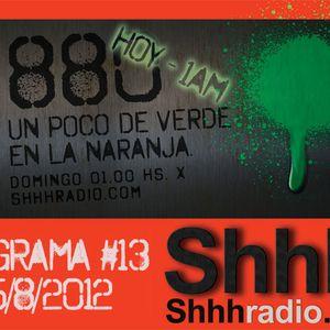 880 - Programa #13
