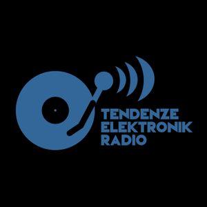 Techno-millennium Programa nº 22 - 13-02-2015