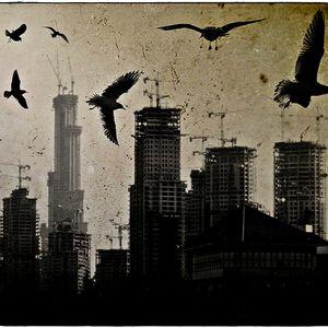 the birds mixtape