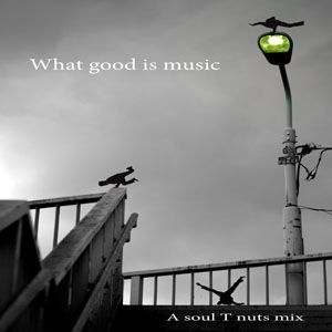 Soul T Nuts - What good is music