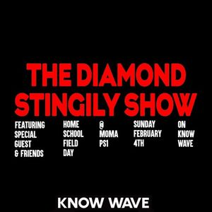 The Diamond Stingily Show Live From MoMA Ps1 Home School Field Day - February 5th, 2018