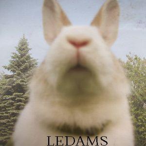 Ledams