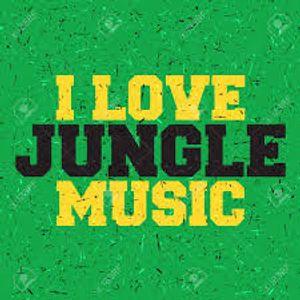 Tasty Jungle '93-95 Mix