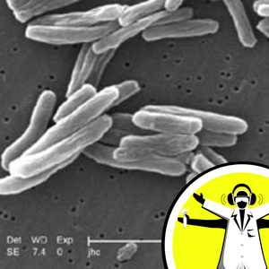 TB and Magnetic Bacteria