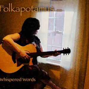Folkapotamus Interview on Radio Nowhere 8/31/14 WMSC 90.3FM