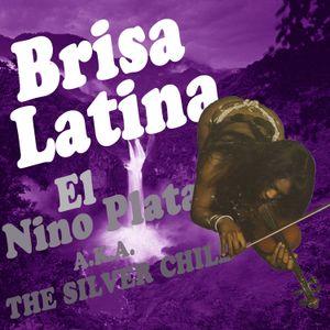 Brisa Latina Mixed by El Nino Plata