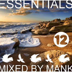 Essentials vol. 12 mixed by MANK