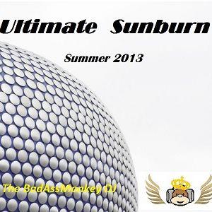 Ultimate Sunburn 13