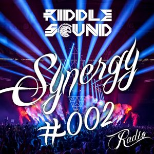 RIDDLE SOUND - Synergy #002