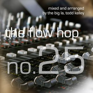 The Flow Hop 25