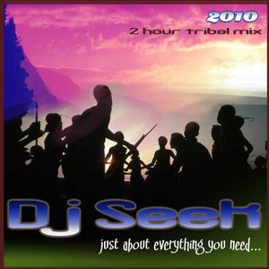 Dj Seek - Just About Everything You Need (May2010)