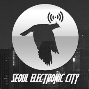 Seoul Electronic City #45