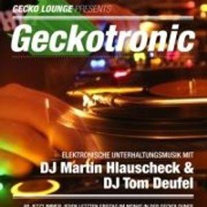 Geckotronic Oktober 2012 Martin Hlauscheck & TomDe