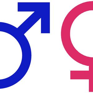 Unisex, Respuesta sexual humana.