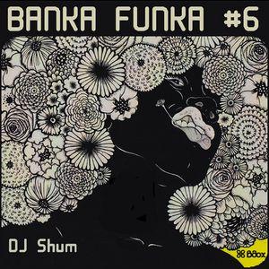 DJ Shum - Banka Funka #6