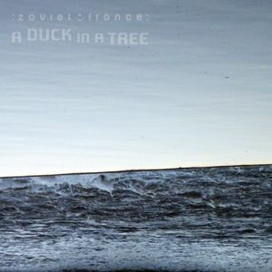 A Duck in a Tree 2015-05-02 | The Whole of the Half