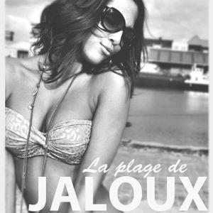 Dj Mack's Live set @ La Plage de JALOUX 12 july at Strantwerpen part 1