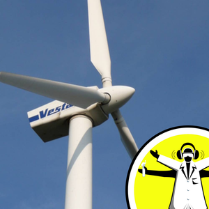 Winds, Wings, Whale Fins and Wind Power