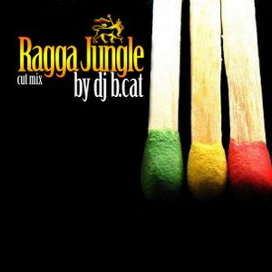 B.CAT-ragga-jungle open air cut mix