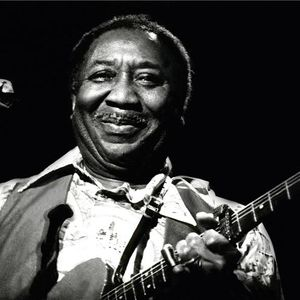 Muddy Waters (1a parte)