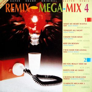 Rock-In Records Remix Mega-Mix 4