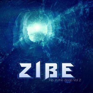 trip in the deep vol 2 dj mix zibe