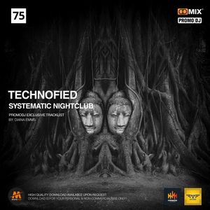 Technofied - In Your Face [SYSTEMATIC NIGHTCLUB LIVE] Vol.75