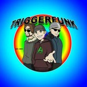 triggerfunk - dj reg's 2hr lounging around sunshine set