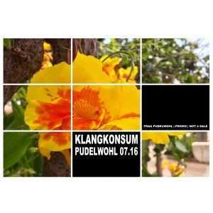 KLANGKONSUM - Pudelwohl 07.16