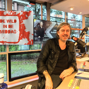 DE WILD IN DE MIDDAG met Ruud de Wild -woensdag 25-01-2017