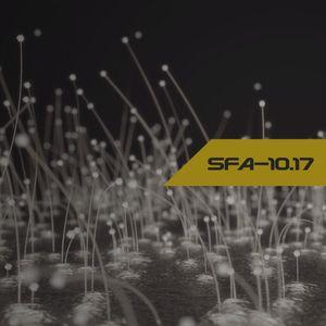 SFA-10.17