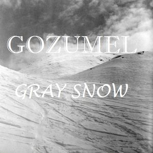 Gozumel - Gray snow (december mix LIVE 17-12-10)