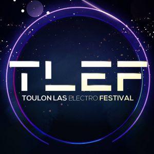 TLEF 2017 - Mosimann