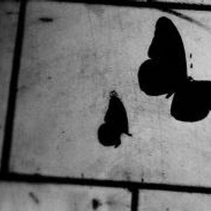"""AFROSPACE 54 - 04/02/2014: """"The Butterfly Illusion"""""""
