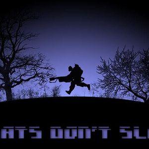 Secretlab - Robats don't sleep