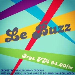Le Buzz 17/05/2013